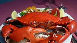 4K Crabs Photo#2