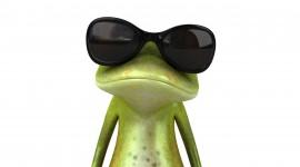 4K Frogs Desktop Wallpaper For PC