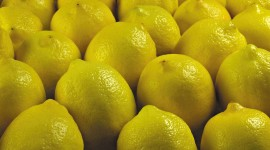 4K Limon Desktop Wallpaper HD