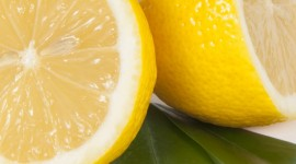 4K Limon Wallpaper For Android