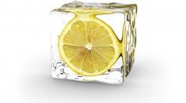 4K Limon Wallpaper For Desktop