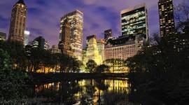 4K Night City Photo Free#1