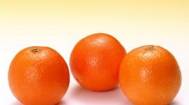 4K Orange Photo Download