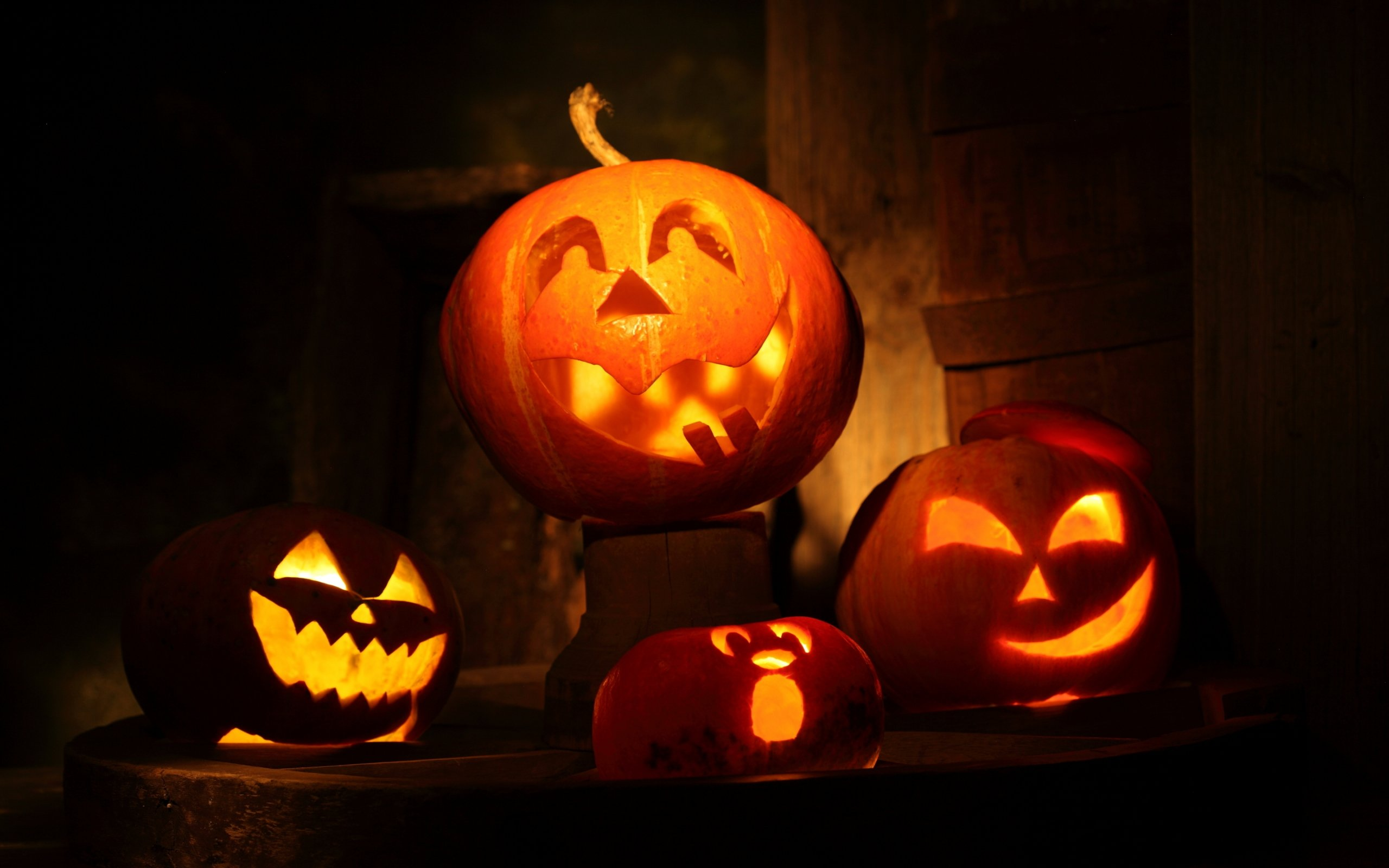 K pumpkin wallpapers high quality download free