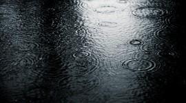 4K Rain Wallpaper HQ