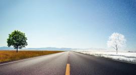 4K Scenic Route Best Wallpaper