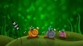 4K Snails Image