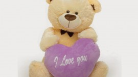 Bear and Love Photo