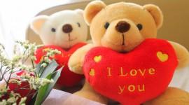 Bear and Love Photo Free