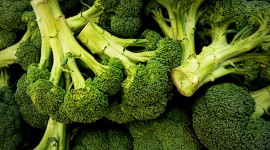 Broccoli Wallpaper Free