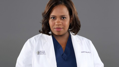 Chandra Wilson wallpapers high quality