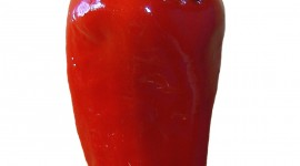 Chili Pepper Wallpaper For IPhone