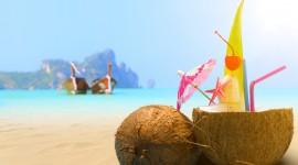 Coconuts Desktop Wallpaper