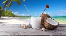 Coconuts Wallpaper HD