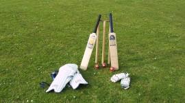 Cricket Desktop Wallpaper For PC