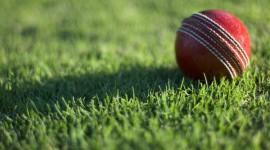 Cricket Wallpaper HD