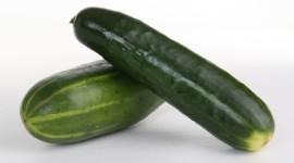 Cucumbers Wallpaper 1080p