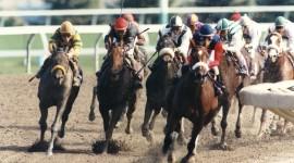 Horse Racing Best Wallpaper