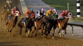 Horse Racing Desktop Wallpaper