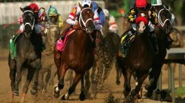 Horse Racing Desktop Wallpaper Free