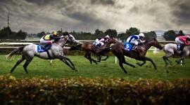 Horse Racing Desktop Wallpaper HD