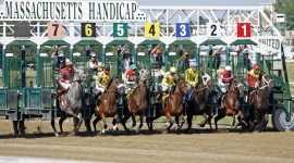 Horse Racing Wallpaper