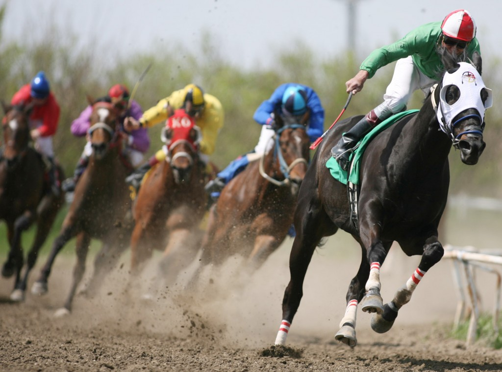 Horse Racing wallpapers HD
