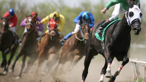 Horse Racing wallpapers high quality