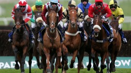 Horse Racing Wallpaper Gallery