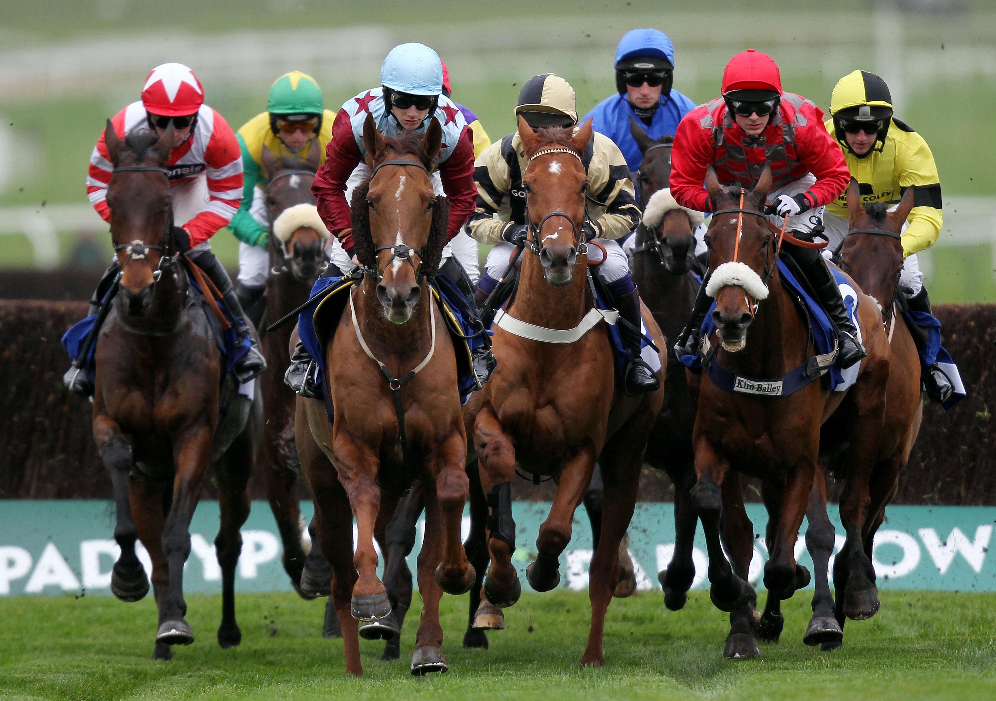 Free Horse Racing