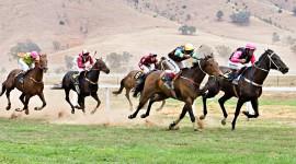 Horse Racing Wallpaper HQ