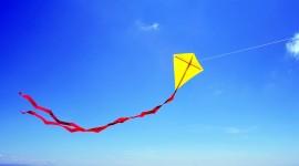 Kites Best Wallpaper