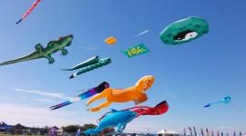 Kites Wallpaper Free