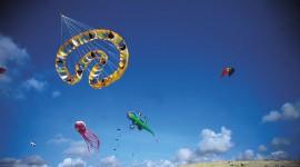 Kites Wallpaper Full HD