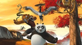 Kung Fu Panda Aircraft Picture