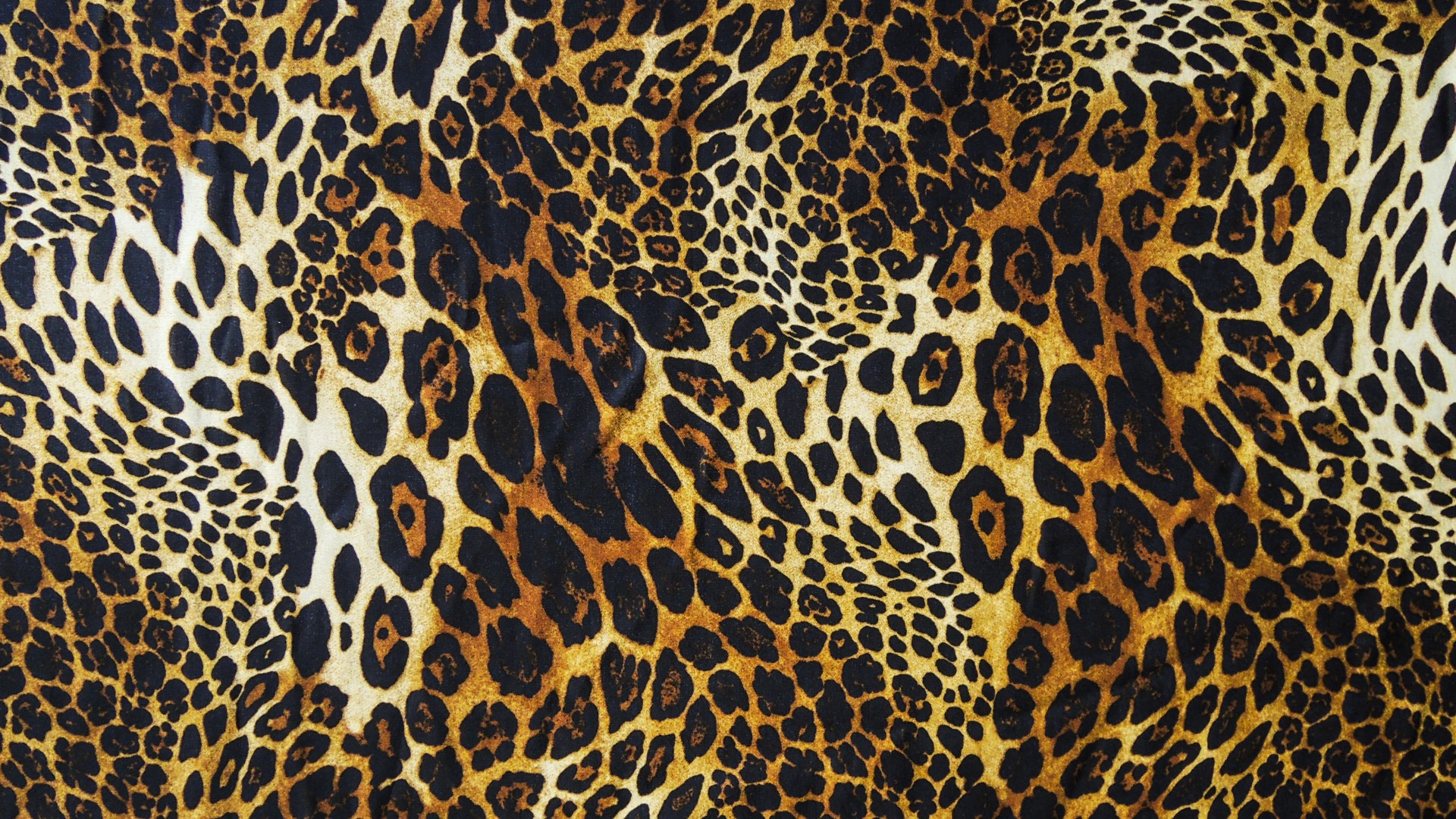 Leopard print wallpapers high quality download free for Printed wallpaper