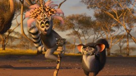 Madagascar Wallpaper 1080p