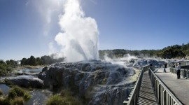 New Zealand Pics