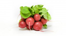 Radish Wallpaper For Desktop