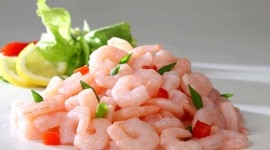 Shrimp Wallpaper Download Free