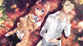 Steins.Gate Photo