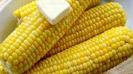 Sweet Corn Photo#1