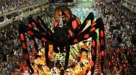 The Carnival in Rio Photo#2