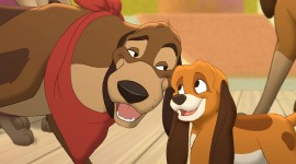 The Fox and the Hound Best Wallpaper