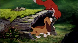 The Fox and the Hound Photo Download