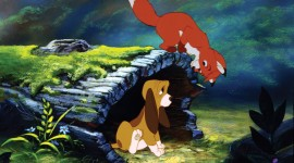 The Fox and the Hound Photo Free
