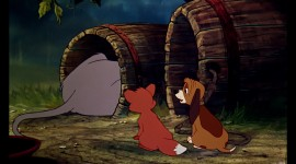 The Fox and the Hound Picture Download