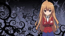 ToraDora Photo