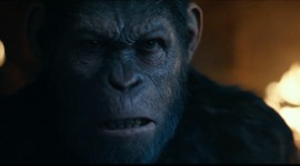 War For The Planet Of The Apes High Quality Wallpaper
