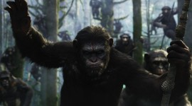 War For The Planet Of The Apes Wallpaper Download Free